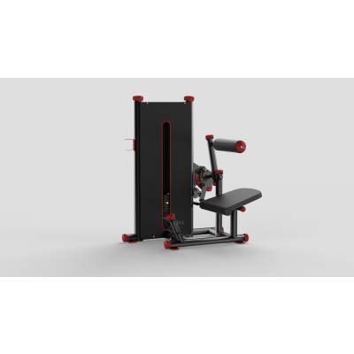 Abdominal Lower Back Red